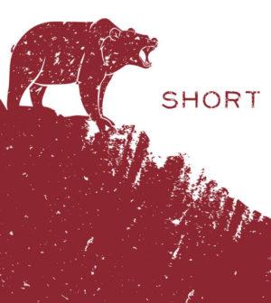 grundlagen-shortselling-trading