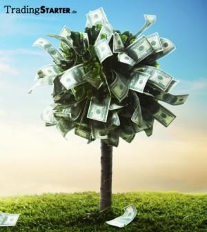 wie geld investieren